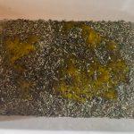 brochettes poulet mariné prepa 1 150x150 - Brochettes de poulet mariné