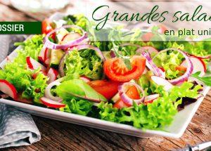 dossier grandes salades 300x215 - Dossier : Grandes salades version plat unique !