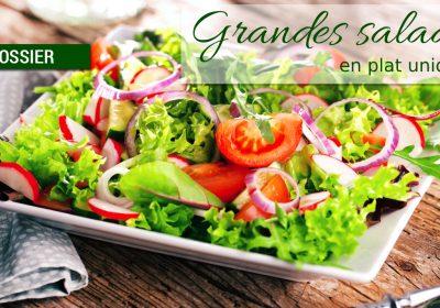 dossier grandes salades 400x280 - Dossier : Grandes salades version plat unique !