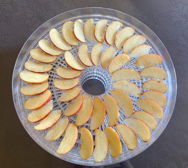 IMG 7570 620x555 - Pommes séchées au déshydrateur